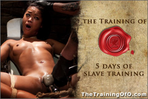 slave training, bdsm, pony girl
